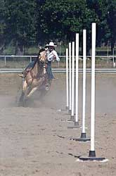 horseback pole bending lessons